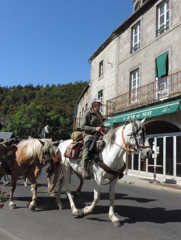 Paardrijden in de Puy-de-Dôme Auvergne-Rhône-Alpes Frankrijk
